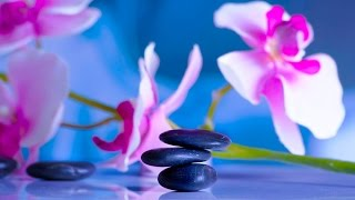 8 HORAS de Música Relajante ★ Música Meditación, Relajación, Dormir, Estudiar, Trabajar, Spa, Zen