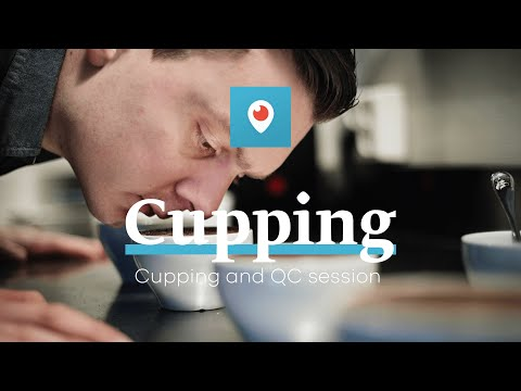 Cupping Session on Periscope with Tim Wendelboe
