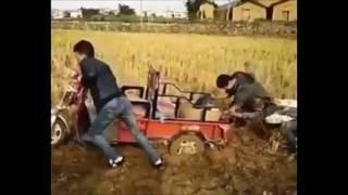 Азиаты на поле Прикол