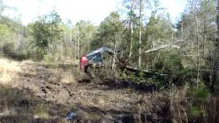 Skid Steer Clearing Trees