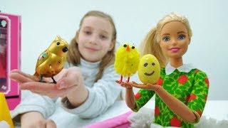 Мультики для девочек. Барби ухаживает за птенцами. Видео про кукол.