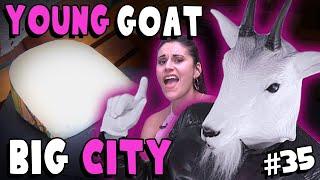 Young Goat Gouda - #35