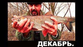Рыбалка с ночевкой на Хищника Рыбалка в декабре по открытой воде Щука Окунь Голавль