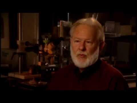 Dave Nichols PhD: Medicinal Chemist