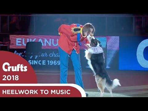 Skiffle & Lucy win again! Freestyle Heelwork to Music Competition Winner | Crufts 2018