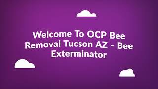 Certified OCP Bee Removal in Tucson, AZ