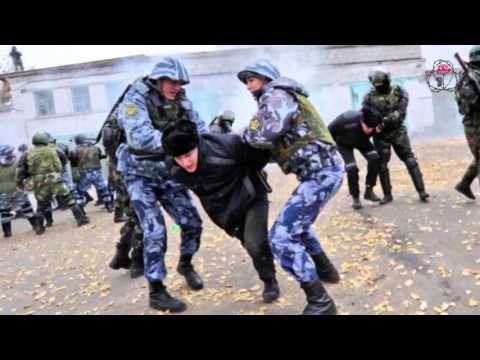 Правозащитница Ева Меркачева   о декриминализации и «законе садистов»