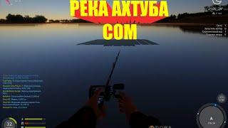 Русская Рыбалка 4 река Ахтуба Сом Russian Fishing 4
