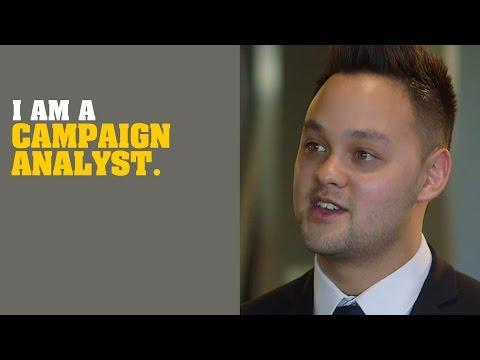 I am a Campaign Analyst