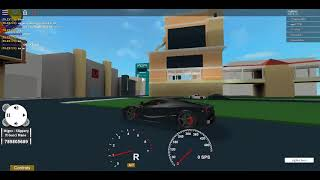 RACING WITH FRIENDS in roblox car sim