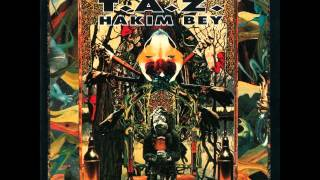 05 The Tong - Hakim Bey & Bill Laswell