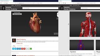 Gale Interactive: Human Anatomy is a Powerful 3D Tool thumbnail