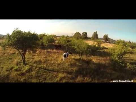 Tomas Aereas con drone TALCA - TBS Discovery pro