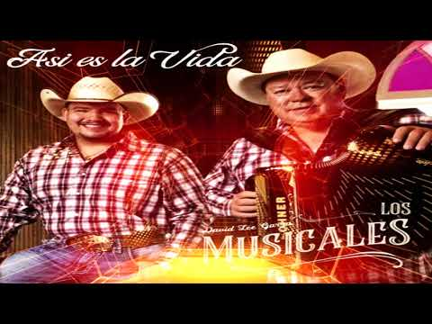 David Lee Garza y Los Musicales - Regresa a Mi (Disco 2018) Asi Es La Vida