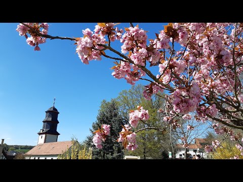 Kirche Hüttengesäß Video-Andacht Ostern 12. April 2020