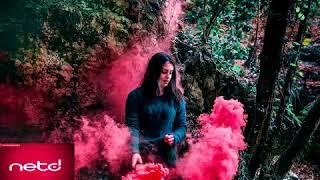 Akcent ft REEA-Stole My Heart Netd musicAze #azerimusic2018