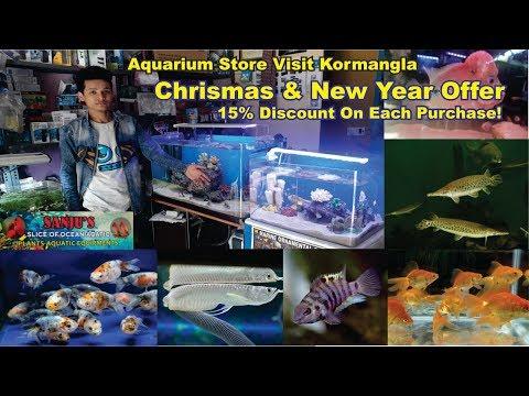Aquarium Store Visit Sanju Fish Store Bangalore