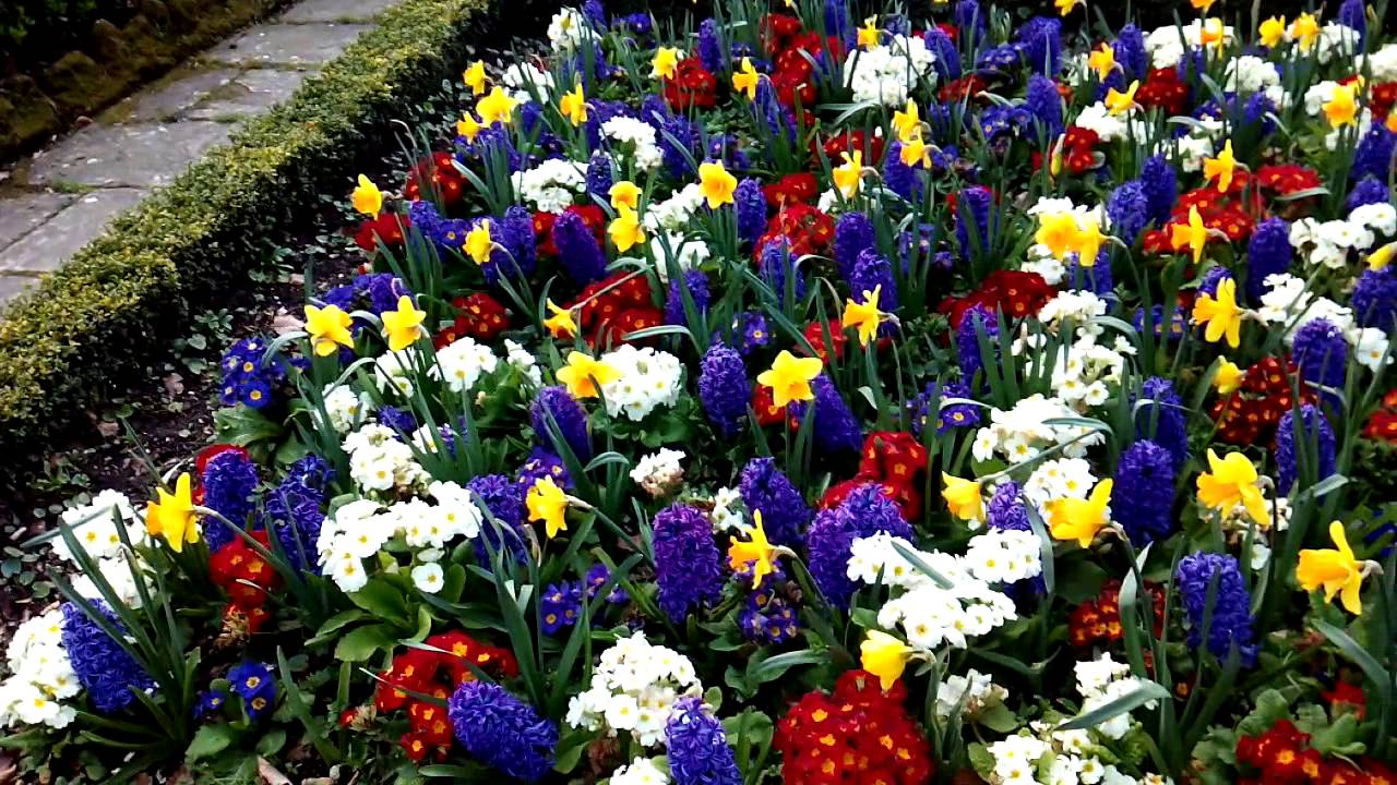 Pamplona los bellos jardines de la taconera en primavera for Jardines de la taconera