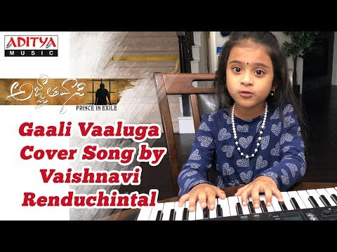 Gaali Vaaluga Cover Song by Vaishnavi...