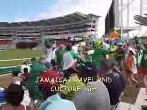 Party Stand Fun at Ireland versus Pakistan in Jamaica
