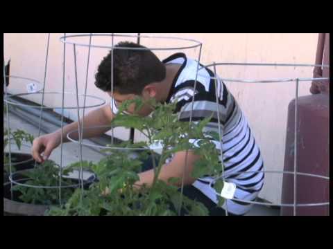 Fontana High School Garden Club