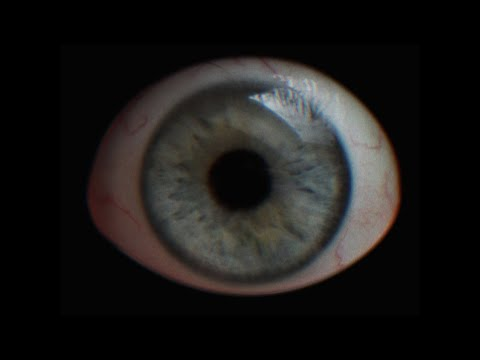 NOHUMANEYE - Simulation (Official Music Video 2020)