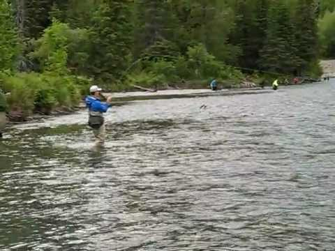 First timer battles sockeye on kenai river youtube for Kenai river fish counts