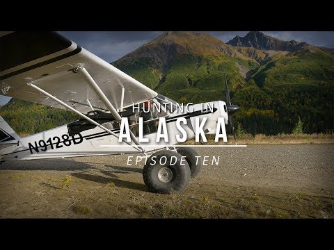 Onto Caribou Country: Hunting Grizzly Bear And Caribou In Alaska