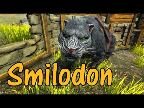 Smilodon Educational Special - Saber Toothed Cat [21]
