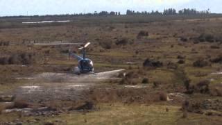 R44 Spraying - West Coast New Zealand