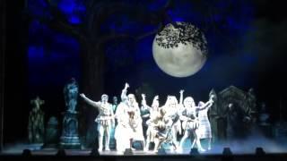 A Dança no Teatro Musical