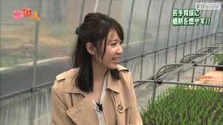 KBS京都テレビ「夢追人」京都編(2019年5月放送)南丹の伏見とうがらし・涼宮菜月リポーター
