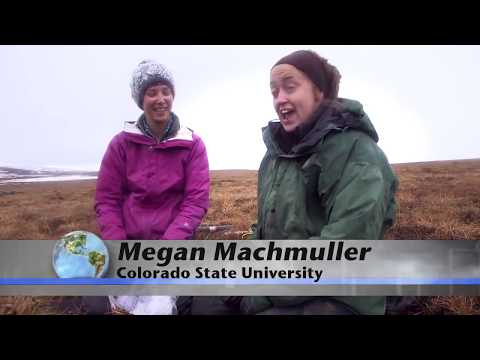 Arctic soils key to future climate- National Science Foundation