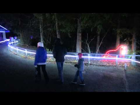 2014-12-29-Woodland Park Zoo and Christmas lights