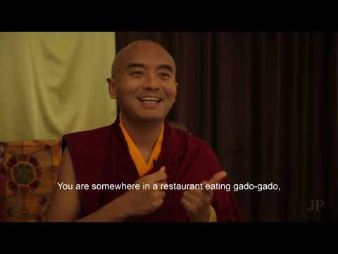 Meditation for Beginners: Buddhist Monks & Teachers Explain the Basics