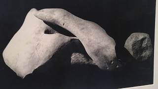 Raoul Ubac, photographe, peintre, sculpteur