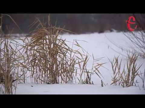 gazeta ye.ua: Прогноз погоди на 22 січня у Хмельницькій області