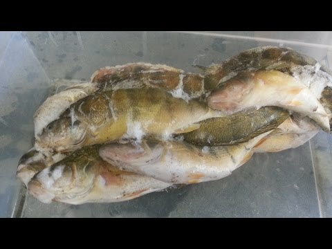 What's In The Fish You Eat From Lake Erie?