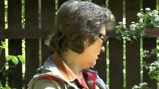 Альпийская горка своими руками.flv(Хорошее видео о том как быстро и красиво сделать альпийскую горку (хвойный рокарий). Также подробную статью..., 2012-02-01T01:14:53.000Z)
