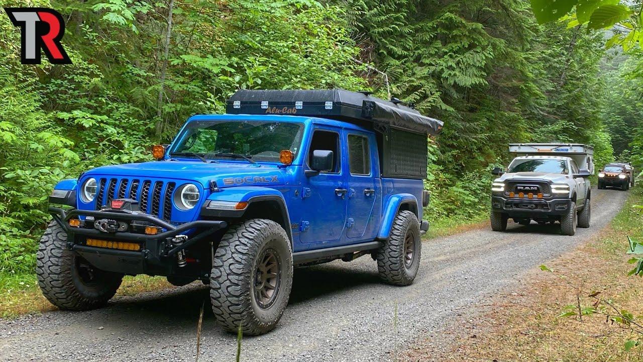 Deep in the Rain Forest of Washington's Olympic Peninsula