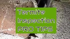 DIY Termite Inspection Tips (Dunn,N.C.)