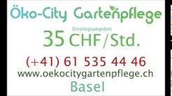 Mittlere Strasse  Basel   35CHFstd  Gärtner  4056