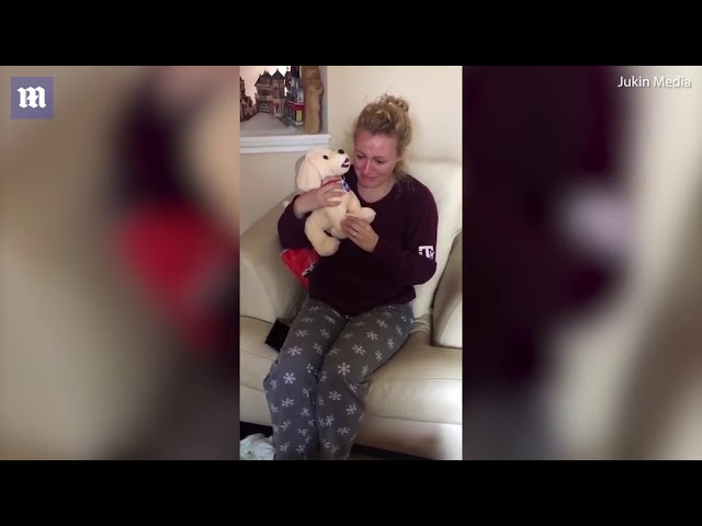 Woman gets a stuffed animal that looks like her deceased dog