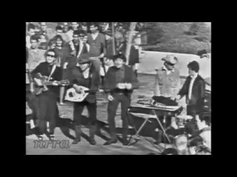 "Paul Revere & The Raiders ""Little Latin Lupe Lu"""