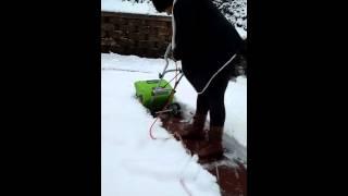 Green works electronic shovel