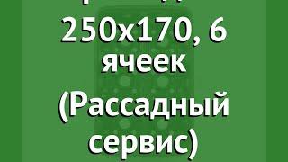 Кассета для рассады 250x170, 6 ячеек (Рассадный сервис) обзор РС0081
