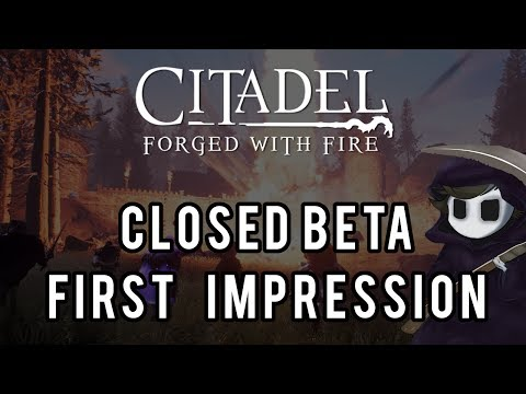 Citadel - First Impression *A little rushed! Sorry!*