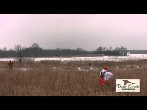 Bear Creek Hunt Club