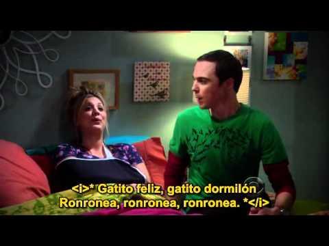 Dúo Soft Kitty  Penny & Sheldon