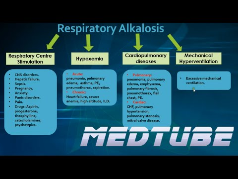 respiratory alkalosis made easy - youtube, Skeleton